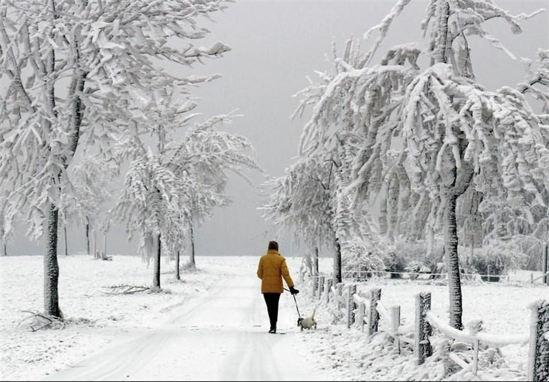 بارش برف در کانادا 150 هزار نفر را در خاموشی فرو برد