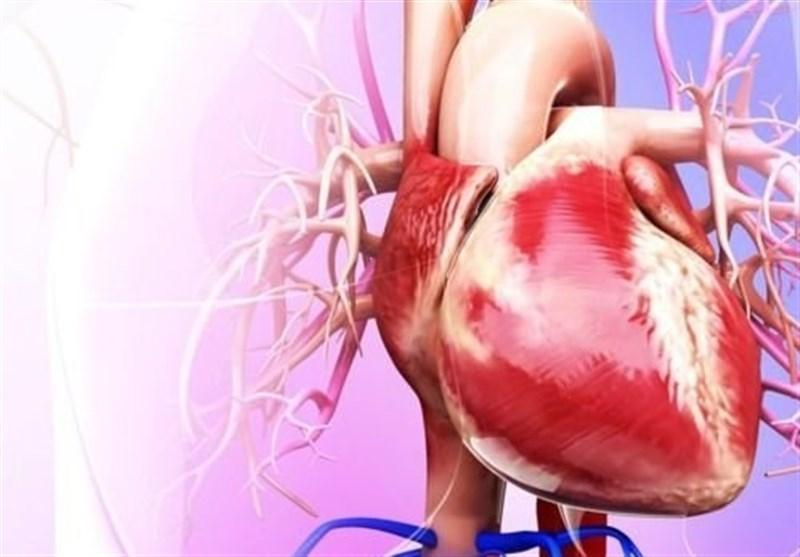اختراع تشک هوشمند برای احیای قلبی و ریوی