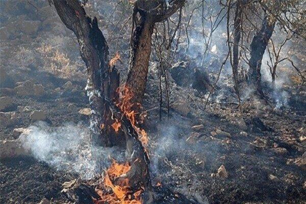 آتش در کمین مراتع و باغ های ارومیه