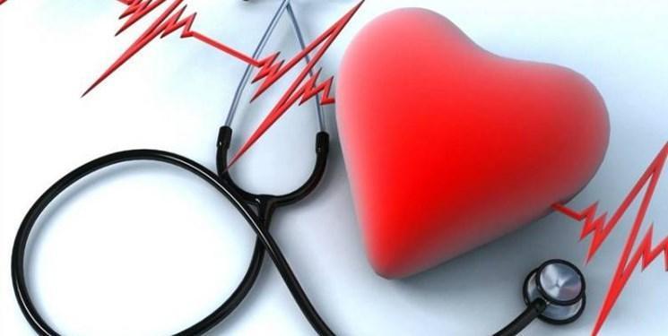 مدل جدید برای پیشگیری و درمان بیماری های قلبی عروقی توسط نخبگان ارائه شد
