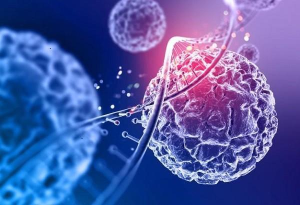 بهره برداری مالی از ذخایر ژنتیکی چند گونه جانوری