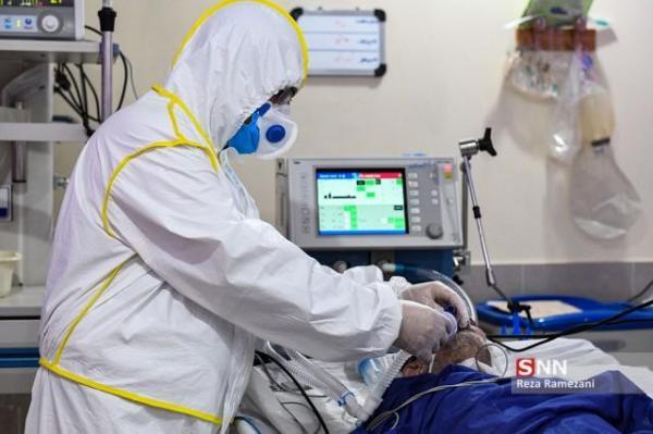 کاهش آمار بستری بیماران کرونایی در استان فارس