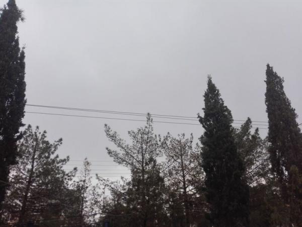 13 بدر تهرانی ها بارانی است خبرنگاران